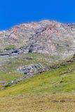Le pecore pascono nelle montagne delle alpi piemonte L'Italia Fotografia Stock