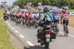 Le Peloton - Tour de France 2017 Photographie stock libre de droits