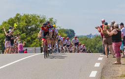 Le Peloton - Tour de France 2017 Photographie stock libre de droits
