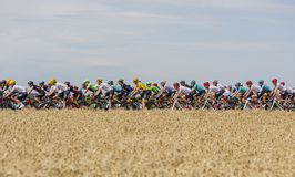 Le Peloton - Tour de France 2017 Photo libre de droits