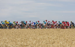 Le Peloton - Tour de France 2017 Photos stock