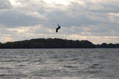 Le pensionnaire de cerf-volant saute au-dessus des arbres Photo libre de droits