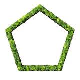 Le Pentagone a fait à partir des feuilles vertes d'isolement sur le fond blanc 3d rendent Photo stock