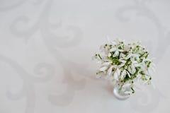 Le perce-neige fleurit au vase sur le fond blanc de brillant avec l'Orn Image stock