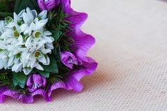 Le perce-neige fleurit le bouquet avec des brindilles de sapin Photo stock