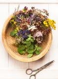 Le perforatum de fines herbes de Medicine Herbes et fleurs Photos stock