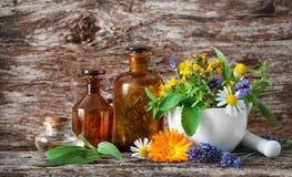 Le perforatum de fines herbes de Medicine Plantes médicinales image stock