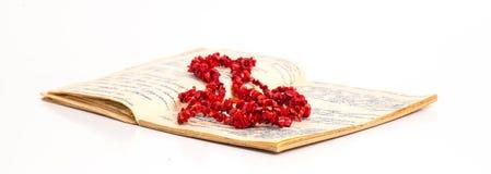 Le perle da una pietra rossa si trova sul taccuino ingiallito con la t Fotografie Stock Libere da Diritti