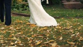 Le persone appena sposate che vanno sul viale amanti per tenersi per mano Legno Caduta Fogli di colore giallo stock footage