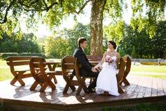 Le persone appena sposate felici fotografia stock libera da diritti