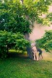 Le personnel de parc s'éteignent cuire le bois à la vapeur le tronc brûle à l'intérieur photos stock