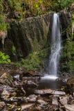 Le petit bec de cascade aux cascades font une boucle la promenade dans un petit village irlandais de Lisseycasey, longue expositi photos stock