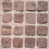 Le petit brun pave avec les joints roses Photo libre de droits