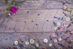Le petit champ fleurit sur le fond en bois superficiel par les agents par vintage Rétro fond floral dénommé Photos libres de droits