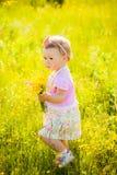 Le petit enfant jouant avec le champ fleurit le jour de ressort ou d'été photo libre de droits