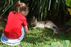 Le petit enfant regarde un petit animal de wallaby de bébé au Queensland, Australi image libre de droits
