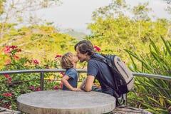 Le petit fils embrassant son père dehors se garent au printemps Image stock