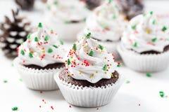 Le petit gâteau de chocolat a décoré la crème et les sapins blancs Photo stock