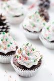 Le petit gâteau de chocolat a décoré la crème et les sapins blancs Photo libre de droits