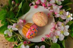 Le petit gâteau ou le petit pain avec la fleur fraîche de ressort s'embranche Photographie stock