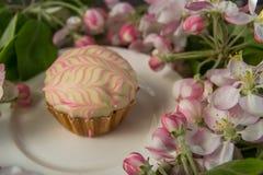 Le petit gâteau ou le petit pain avec la fleur fraîche de ressort s'embranche Image libre de droits