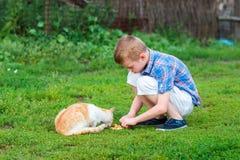 Le petit garçon alimente le chat sans abri dans un jardin Photo stock