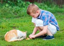 Le petit garçon alimente le chat sans abri dans un jardin Photographie stock