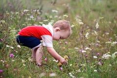 Le petit garçon attrape le caneton dans l'herbe Photographie stock