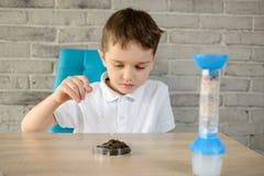 Le petit garçon avec une pipette examine un échantillon de sol Images libres de droits