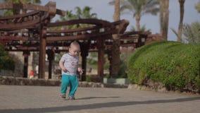Le petit garçon blond mignon marche sur la plage près des paumes banque de vidéos