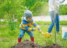 Le petit garçon dans l'arbre de jardin, peu de poteau de tente de sadit de fouilles pour des jeunes plantes Image stock