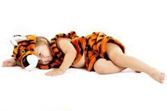 Le petit garçon dans un procès d'un tigre Photographie stock