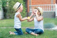 Le petit garçon donne à son frère le maïs Deux frères s'asseyant sur l'herbe et manger l'épi de maïs dans le jardin image libre de droits