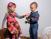 Le petit garçon donne à une fille une rose, d'isolement sur le blanc Photo stock