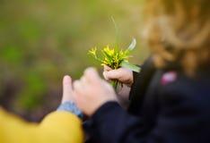 Le petit garçon donne un petit bouquet des fleurs sauvages jaunes à une fille photographie stock