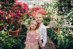 Le petit garçon et la fille marchent dans un jardin de floraison Photographie stock libre de droits