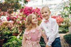 Le petit garçon et la fille marchent dans un jardin de floraison Photo stock
