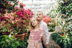 Le petit garçon et la fille marchent dans un jardin de floraison Photos stock