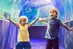 Le petit garçon et la fille observant les poissons de corail tropicaux dans la grande vie marine échouent Enfants à l'aquarium de photos libres de droits