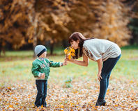 Le petit garçon et sa mère pendant l'automne se garent photographie stock