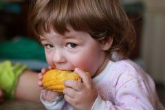 Le petit garçon mange du maïs avidement acéré image stock