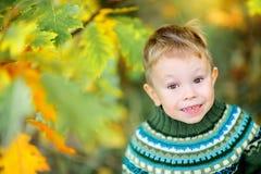 Le petit garçon marche dans le sourire de parc d'automne photo stock