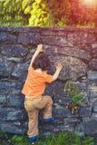 Le petit garçon monte la barrière Photographie stock