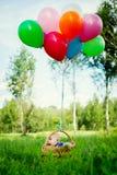 Le petit garçon s'assied dans un panier avec les ballons colorés Photo stock
