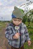 Le petit garçon souffle au pissenlit Image stock