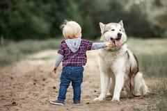Le petit garçon tient le chien proche de malamute sur la promenade dans la forêt et le touche Image libre de droits