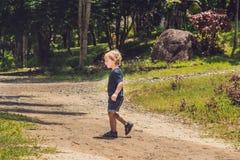 Le petit garçon va sur la traînée de forêt Un enfant marche dans l'AMO de forêt Photos stock