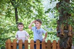 Le petit grimpeur prend le pont de corde Le garçon a le temps d'amusement, enfant s'élevant le jour chaud ensoleillé d'été Image stock