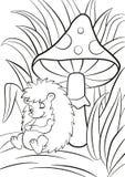 Le petit hérisson mignon dort près du grand champignon Image stock