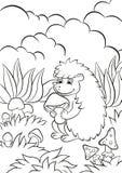 Le petit hérisson mignon tient le champignon dans les pattes et les sourires Photographie stock libre de droits